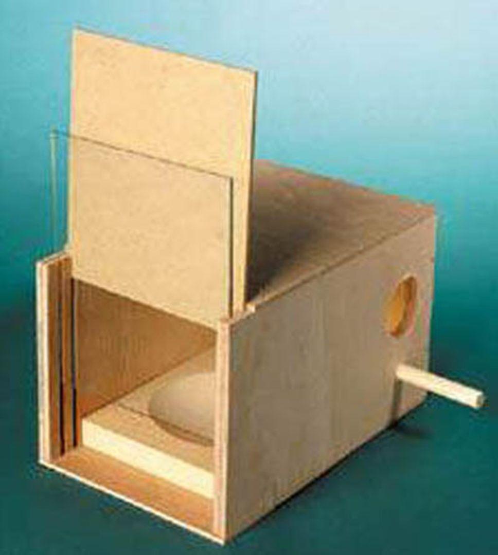 Как сделать домик для попугаев своими руками из фанеры