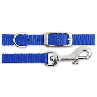 Small Bite Collar & Lead Set Nylon Reflective Blue (Pack of 3)