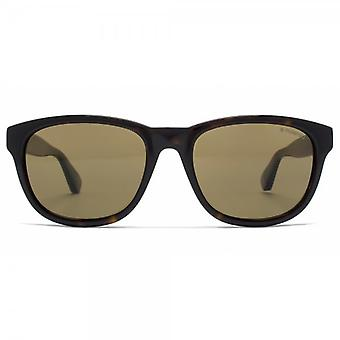 Polaroid Plus Rounded Wayfarer Style Sunglasses In Dark Havana Brown Polarised