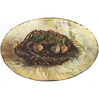 Vincent Van Gogh - Basket with Flowers-Bulbs, 1887 Poster Print Giclee