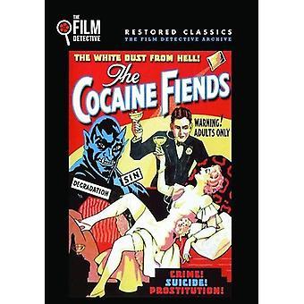 Kokain djævel [DVD] USA importerer
