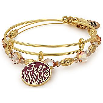 Alex And Ani Feliz Navidad Bracelet Charm Set of 2 - A17SETHOL10SG