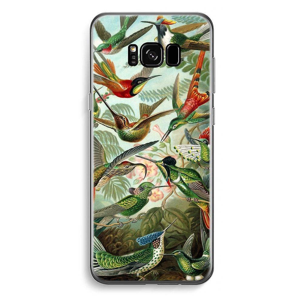 Samsung Galaxy S8 sowie transparentes Gehäuse - Haeckel Trochilidae