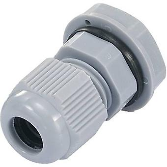 Cable gland PG13.5 Polyamide Silver-grey (RAL 70