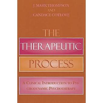 The Therapeutic Process - A Clinical Introduction to Psychodynamic Psy