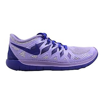 Nike Free 5.0 Hydrangeas/Light Magenta-White-Purple Haze 644446-501 Grade-School
