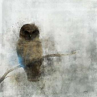 Wächter-Eule-Plakat-Druck von Ken Roko