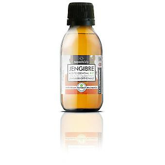 Terpenic Labs Ginger Essential Oil 100 ml
