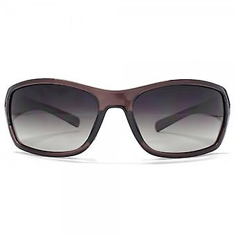 Freedom Polarised Square Wrap Sunglasses In Brown