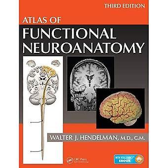 Atlas toimiva Neuroanatomia, kolmas painos