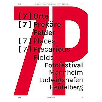 Fotofestival Mannheim - Ludwigshafen - Heidelberg - 9783868286403 Book
