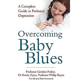Overwinnen Baby Blues: A Complete Guide to perinatale depressie