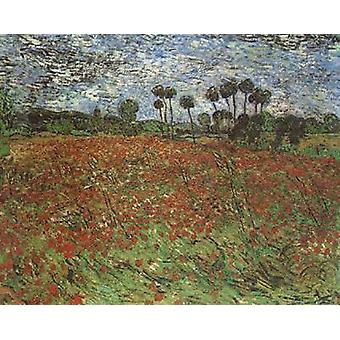 Field with Poppies, Vincent Van Gogh, 60x50cm