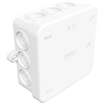 Junction box (L x W x H) 85 x 85 x 40 mm OBO Bettermann 2000180