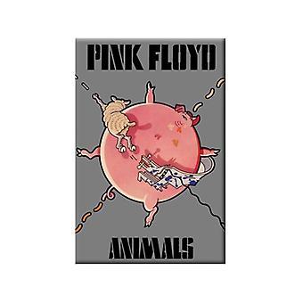 Imán de nevera acero de animales (cerdo inflado) de Pink Floyd
