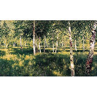 Birch Plantation,Isaac Levitan,60x35cm