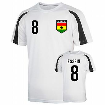 Ghana Sports Training Jersey (essien 8)