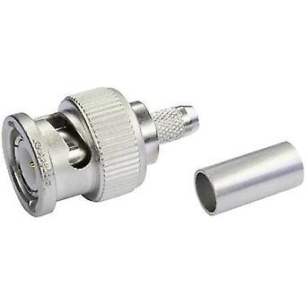 Conector BNC enchufe recto 75 Ω Telegärtner J01002A0030 1 PC