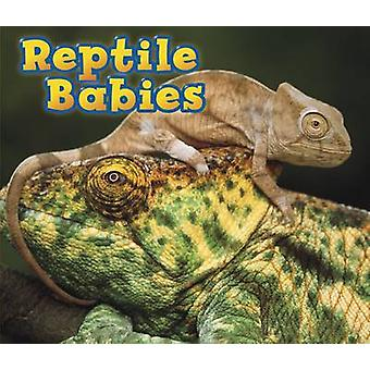 Reptile Babies by Catherine Veitch - 9781406259346 Book