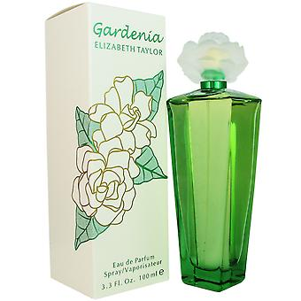 Gardenia for Women by Elizabeth Taylor 3.3 oz EDP Spray