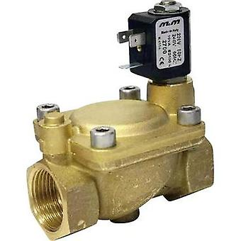 M & M International B222DBY Servo-controlled Solenoid Valve