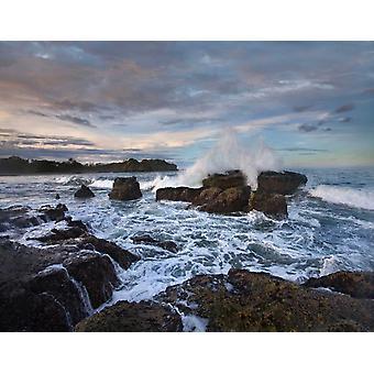 Surfen Sie auf felsigen Küste Pelada Strand Costa Rica Poster Print von Tim Fitzharris