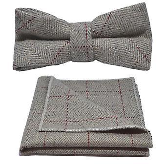 Platina grå Fiskbens fluga & Pocket Square Set