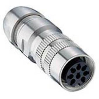 DIN connector Socket, straight Number of pins: 8 Silver Lumberg 036000 08-1 1 pc(s)