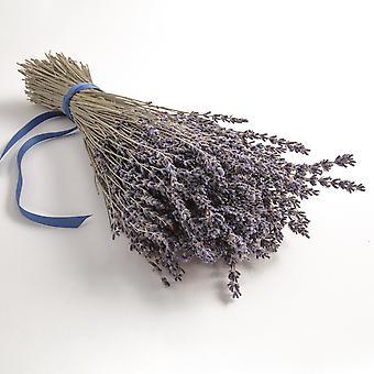 Bouquet de lavande lavande