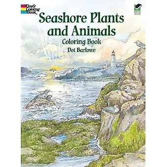 Seashore Plants and Animals Coloring Book (Dover Nature Coloring Book)