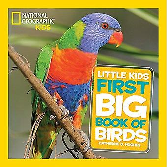 Big Book Of Birds (National Geographic Little Kids First Big Books)