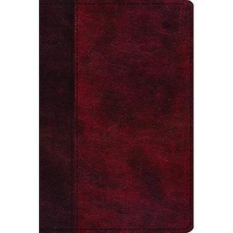 ESV journalföring nya testamentet, induktiva Edition