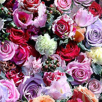 Nelliker roser blomstret tapet fotografiske bær rød pink pasta væg vinyl