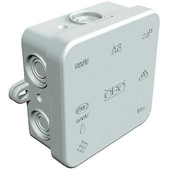 Junction box (L x W x H) 75 x 75 x 36.2 mm OBO Bettermann 2000016 Light grey (RAL 7035) IP55
