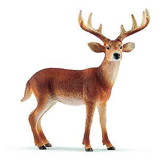 Schleich Vitstjärtad Buck