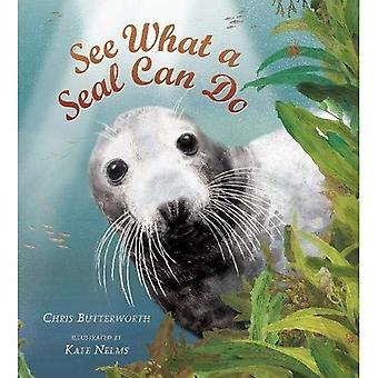 See What a Seal Can Do (Nature Storybook)