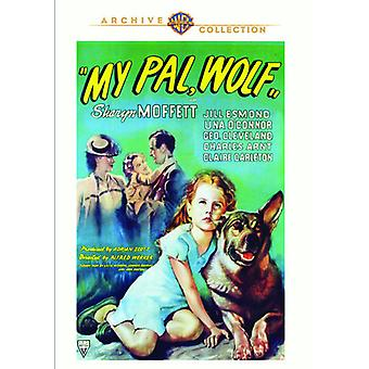 Mein Kumpel Wolf [DVD] USA import