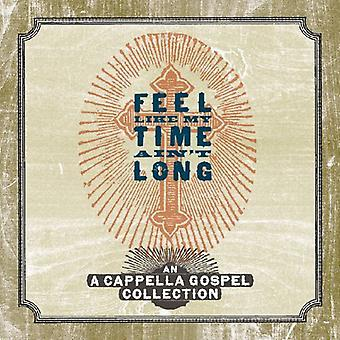 Feel Like My Time Ain't Long - Feel Like My Time Ain't Long [CD] USA import