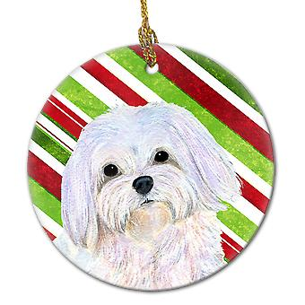 Maltese Candy Cane Holiday Christmas Ceramic Ornament SS4551