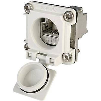 STX V6 RJ45 flange set option 6 Connector, mount Number of pins: 8P8C J00020A0482 Light grey Telegärtner J00020A0482 1 pc(s)