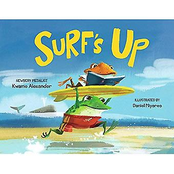 Surf's Up [Board book]