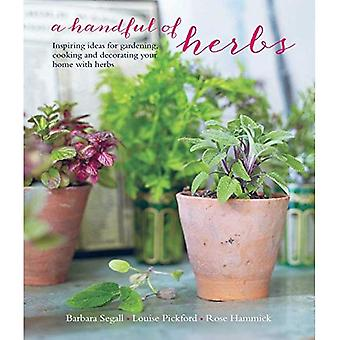 A Handful of Herbs - Inspiring ideas for gardening, cooking and decorating your home with herbs