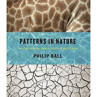 Patterns in Nature - Why the Natural World Looks the Way It Does by Ph