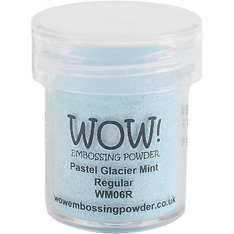 WOW! Embossing Pulver 15ml-Gletscher Mint WOW-WM06R