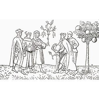 Friar Oderic of Pordenone holding a branch from a tree on which birds grow being shown in turn by the local king the Lamb Tree of Tartary showing a lamb emerging The Vegetable Lamb of Tartary legendar