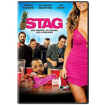 Stag [DVD] USA import