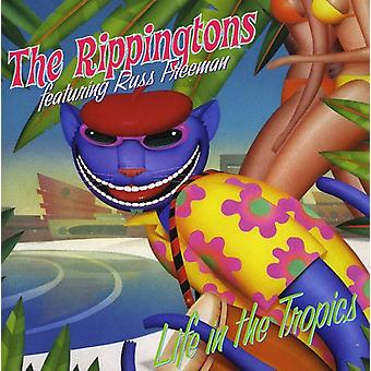 Rippingtons - liv i troperne [CD] USA importen