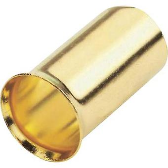Ferrules 10 mm² Sinuslive gold-plated