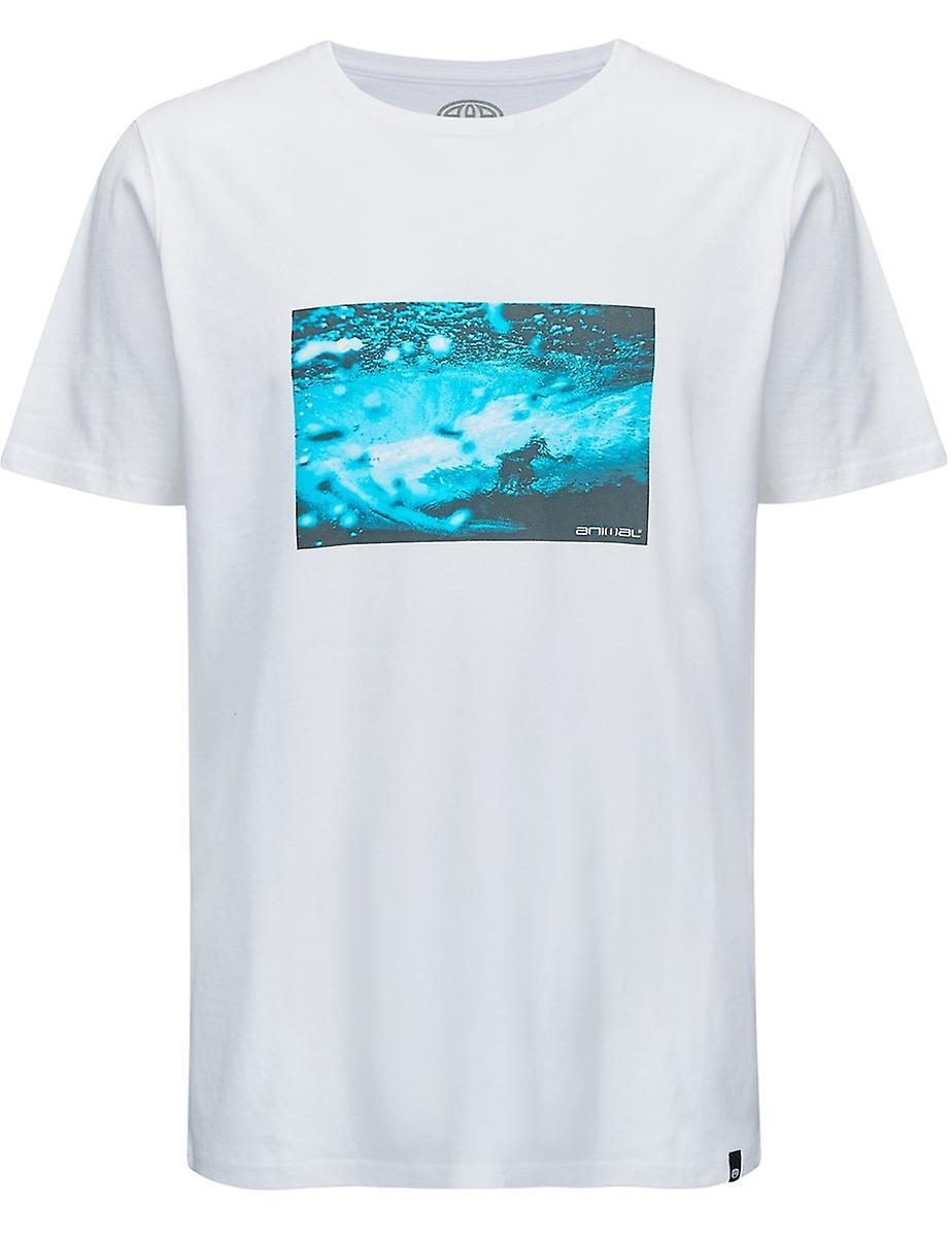 Animal Photographic Short Sleeve T-Shirt