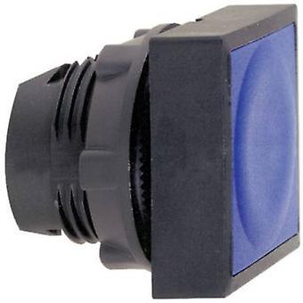 プッシュ ボタンの平面黒シュナイダー